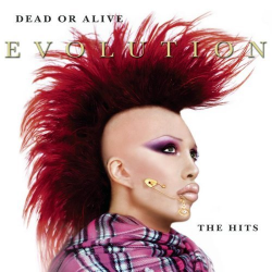DEAD OR ALIVE-Evolution-The Hits